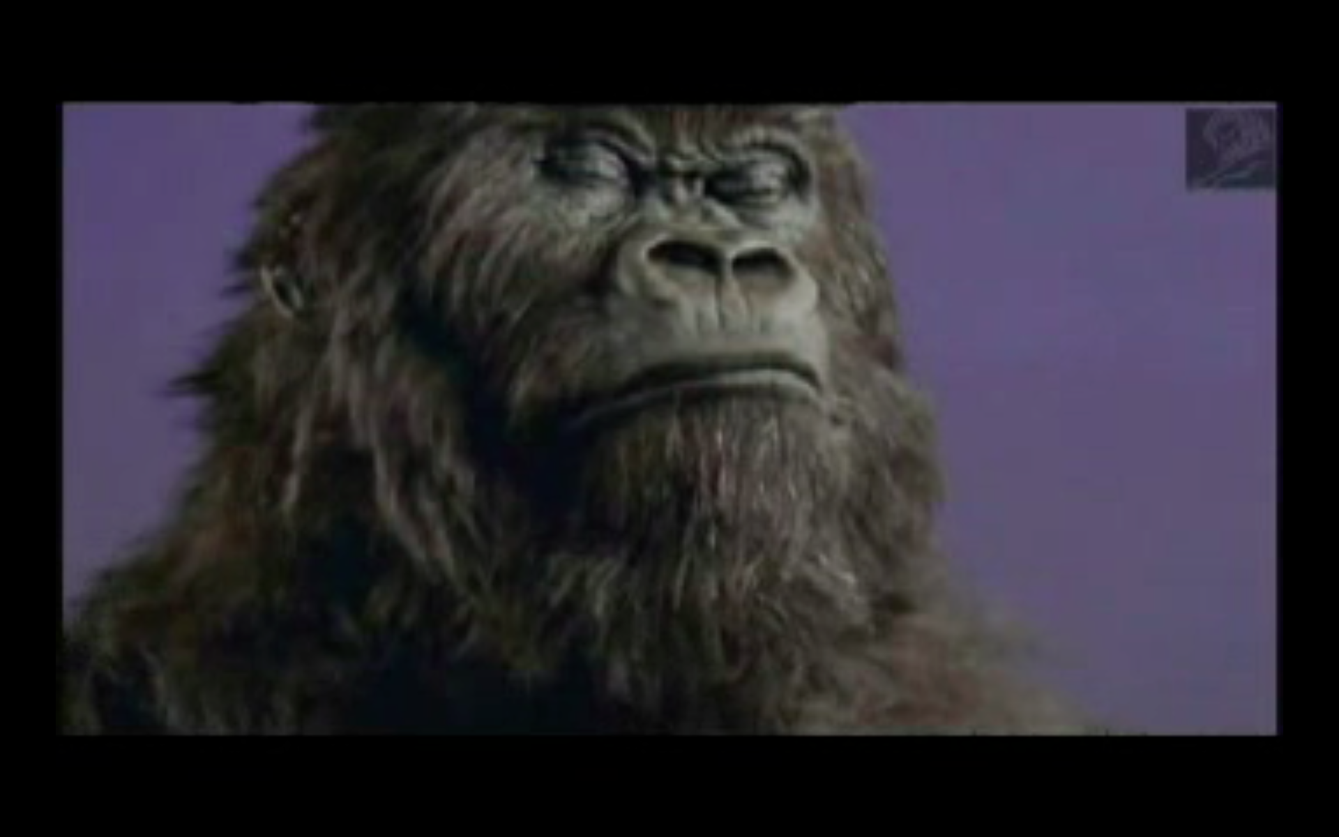 Gorillas and babes hentia naked clip