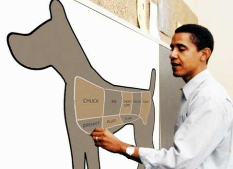 12934-Obama_Draw_Dog_Map